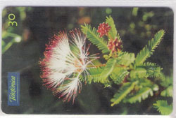 47267 SP 09/00 Flores do Cerrado - Calliandra Virgata T500.000 INT 30C